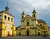 Roman Catholic Cathedral, Ivano-Frankivsk, Ukraine — Foto Stock