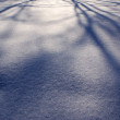 Snow background - Foto de Stock  
