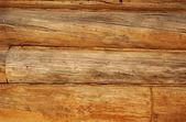 Troncos de madera — Foto de Stock