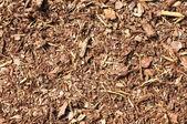 Bark mulch — Stock Photo