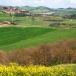 Italy. Tuscany, Val D'Orcia valley. — Stock Photo