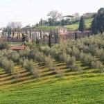 Italy. Tuscany, Val D'Orcia valley — Stock Photo #3069981