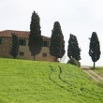 Italy. Tuscany landscape. — Stock Photo