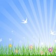 Spring Meadow Background — Stock Vector