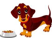 Dachshund dog — Stock Vector