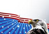 Bald Eagle American Flag — Stock Vector
