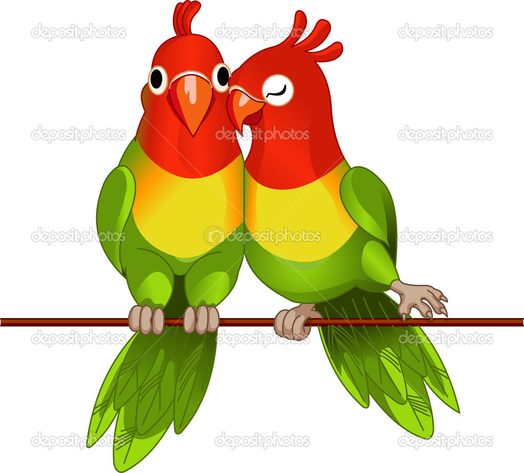 Pair of lovebirds agapornis-fischeri on white  Stock Vector #2979590