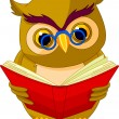 Wise Owl Cartoon - Stock Vector
