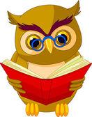 Wise Owl Cartoon — Stock Vector