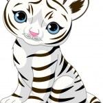 cub tigre blanc mignon — Vecteur