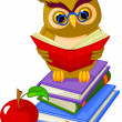 Royalty-Free Stock Vector Image: Wise Owl sitting on Pile book