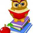 Wise Owl sitting on Pile book - Stock Vector