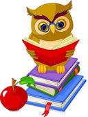 Moudrá sova sedí na hromadě knihu — Stock vektor