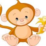 Baby Monkey eating banana — Stock Vector