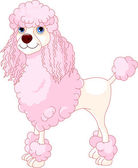 Pink Poodle — Stock Vector