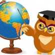 Stock Vector: Cartoon Wise Owl with world globe