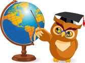 Cartoon Wise Owl with world globe — Stock Vector