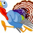 Running Cartoon Turkey - Stock Vector
