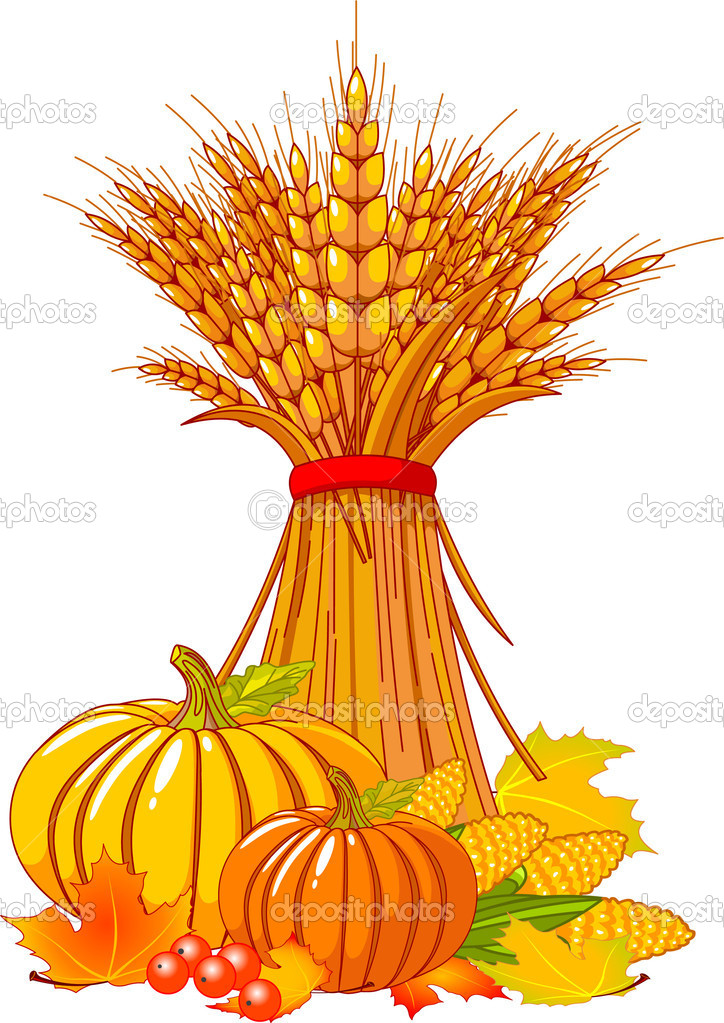 Seasonal background with plump pumpkins, wheat, corn and autumn leaves — Stock Vector #3706476