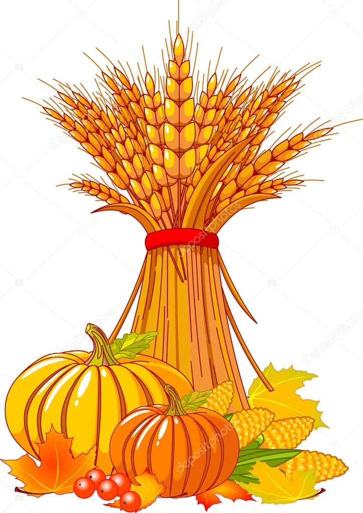Seasonal background with plump pumpkins, wheat, corn and autumn leaves — ベクター素材ストック #3706476