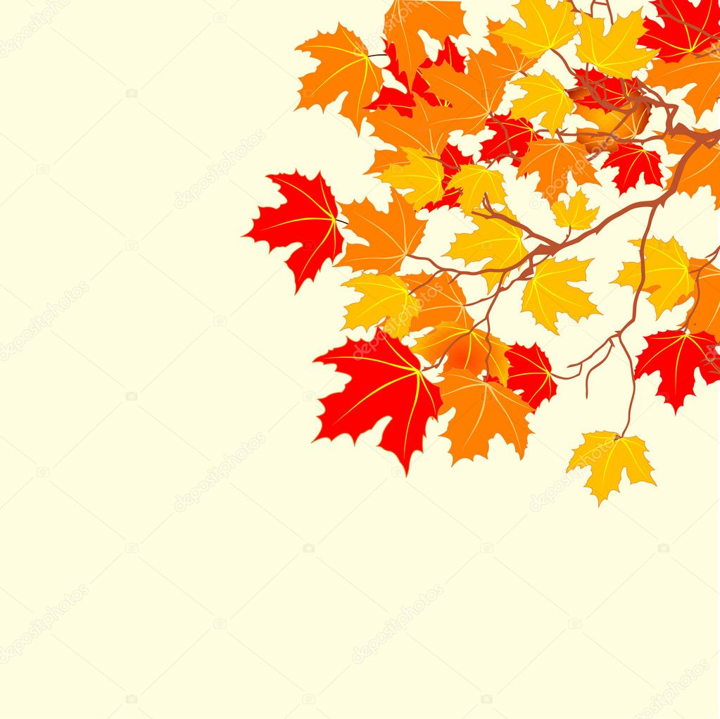 Vector Autumn background with space for text.  — Stock Vector #3730475