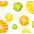 Citrus background — Stock Vector #3803317