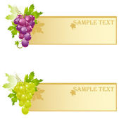Grape backgrounds — Stock Vector