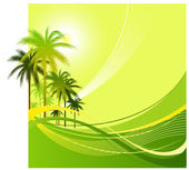 Palm background — Stock Vector