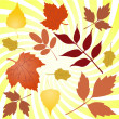 Autumn leaves - Stock Vector