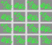 Yeşil çiçekler hücrelerinde — Stok Vektör