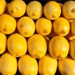 Zitronen — Stockfoto