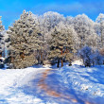 Snow road in city park — Stock Photo