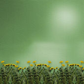 Green background with dandelions — Stock Photo