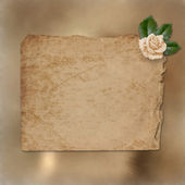 Grunge paper for congratulation — Photo