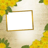 Background with bunch of dandelions — Stock Photo