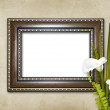 Old grunge frames Victorian style - Photo