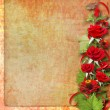 Card for congratulation or invitation with red roses — Foto Stock