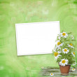 Grunge frame with beautiful bunch of daisy for design — Stock Photo #3709382