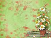 Grunge papír s krásnou banda daisy a mák pro design — Stock fotografie