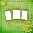 Grunge paper frames with flowers pumpkins and ribbons - Stock Photo