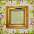 Wooden frame with a branch of the vine - Stockfoto