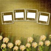 Vecchio alienato diapositive sul muro nella stanza con fiori — Foto Stock