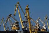 Port cranes — Stock Photo