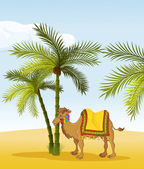 Camel — Vector de stock