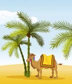 Kamel — Stockvektor