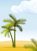 Two palm-tree — Vector de stock