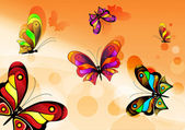 Vector butterfly — Vector de stock