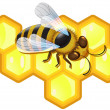 Vector bee and honeycombs — Vector de stock