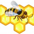 Vector bee and honeycombs — ストックベクタ