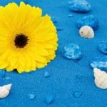 Summer fun at the beach — Stock Photo